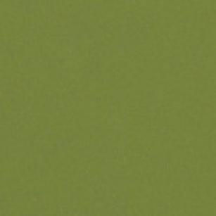 5204 САЛАТОВЫЙ ПЕРЛАМУТР